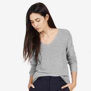 Everlane Cotton V Neck Sweater